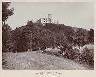 Zamek Lipowiec w Babicach - Zamek Lipowiec na zdjęciu Józefa Zajączkowskiego z 1905 roku