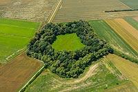 Zamek w Breniu - zdjęcie lotnicze, fot. ZeroJeden, VII 2020