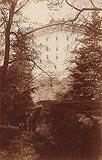 Zamek w Domanicach - Zamek w Domanicach w 1915 roku