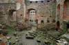 Zamek w Drzewicy - fot. ZeroJeden, IV 2006