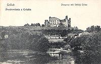 Zamek w Golubiu-Dobrzyniu - Zamek w Golubiu w 1925 roku