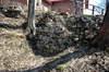 Zamek w Grodzisku - Pozostałości murów po zewnętrznej stronie fosy, fot. ZeroJeden, IV 2006