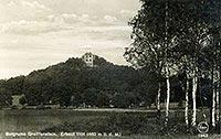 Zamek Gryf w Proszówce - Zamek na widokówce w 1925 roku