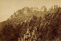 Zamek Bolczów w Janowicach Wielkich - Ruiny zamku Bolczów na zdjęciu Roberta Halma z 1890 roku