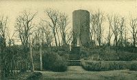 Zamek w Kruszwicy - Zamek w Kruszwicy na pocztówce z 1925 roku