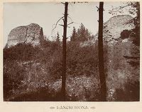 Zamek w Lanckoronie - Ruiny zamku w Lanckoronie na zdjęciu Józefa Zajączkowskiego z 1905 roku