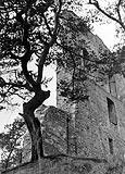 Zamek w Melsztynie - Ruiny zamku w Melsztynie na zdjęciu Kintschera z 1941 roku