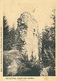 Zamek w Muszynie - Ruiny zamku na zdjęciu J.Zajączkowskiego z początku XX wieku