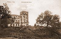 Zamek w Płotach - Zamek na zdjęciu z 1912 roku