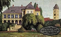 Zamek w Rogowie Sobóckim - Zamek w Rogowie w 1863 roku