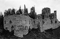 Rudno - Zamek Tenczyn na zdjęciu Albina Friedricha z końca XIX wieku