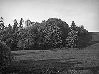 Zamek w Rybnicy - Zdjęcie z początku XX wieku