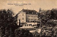 Skała - Pałac w Skale w 1919 roku