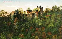Zamek w Starym Książu - Ruiny zamku w 1913 roku