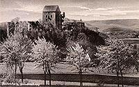 Świny - Zamek Świny na pocztówce z okresu międzywojennego