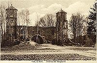 Zamek w Toszku - Zamek w Toszku na pocztówce z 1924 roku