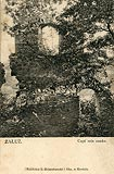 Zamek Sobień w Załużu - Ruiny zamku na pocztówce z około 1900 roku